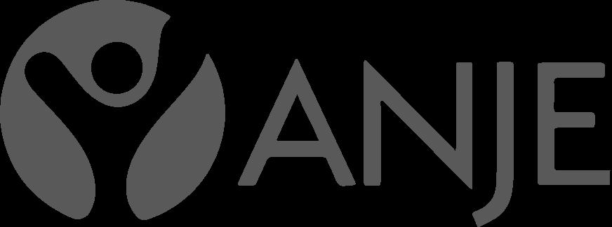 Logo ANJE gris